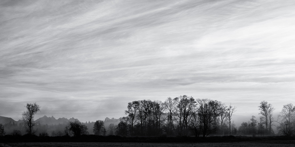 Snohomish Valley Sunrise Black & White