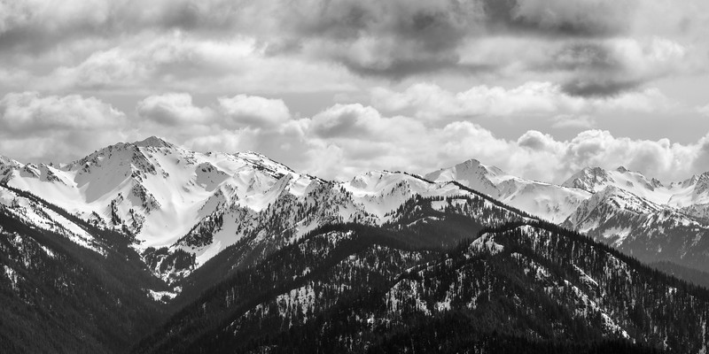 Hurricane Ridge Black & White