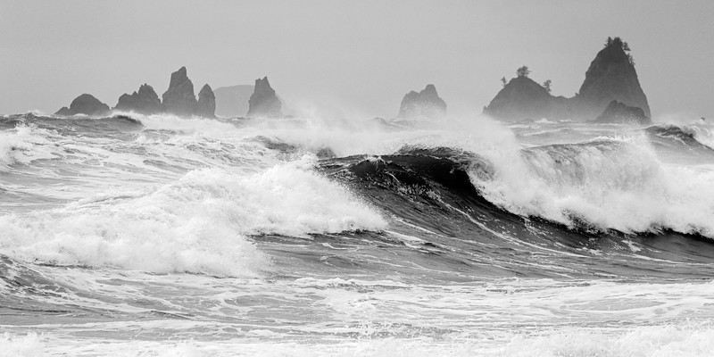 Rialto Beach Black & White