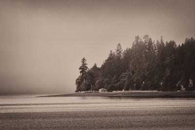 images from Vaughn Bay, Washington 2012.