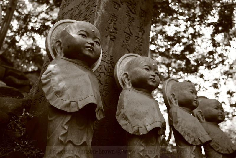 Little watchers of Sapporo, Japan.