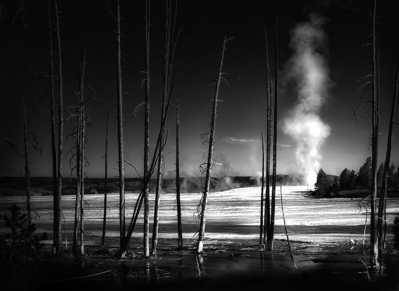 Yellowstone Park Geyser