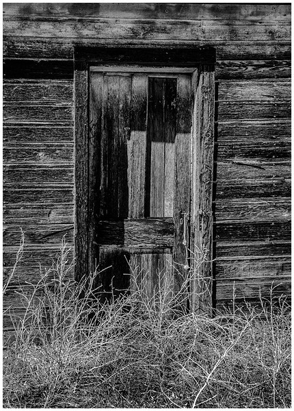 The Shed Door