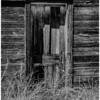 The Shed Door