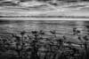2 Pacific Ocean Big Sur