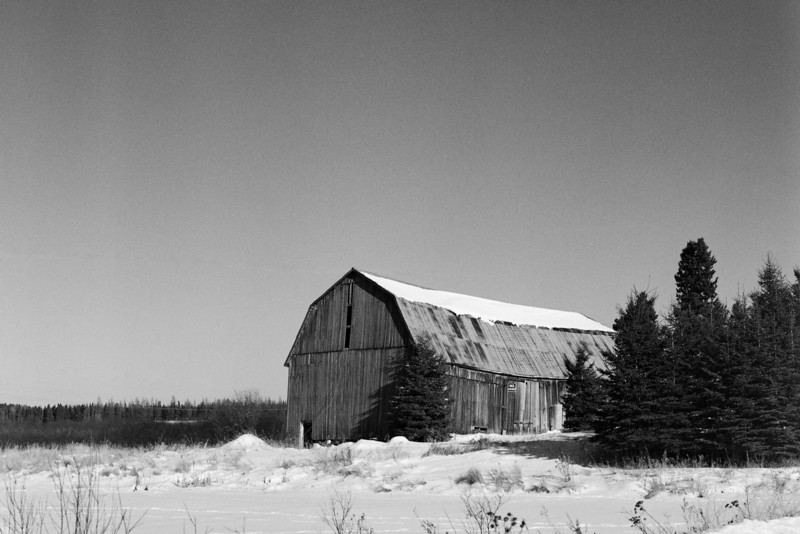 When testing new films, cameras, lenses or in this case: developers I like to shoot the same locations to reduce some variables. This would explain why you might see many photos of this barn or a old one room school house on my site.<br /> <br /> Pentax 645 loaded with Ilford Pan F+. The film was developed in Coffenol (500ml water, 27g washing soda, 8g Vitamin C and 20g instant coffee) for 15 minutes at 20C.<br /> <br /> This roll was my first attempt at developing film using Coffenol.