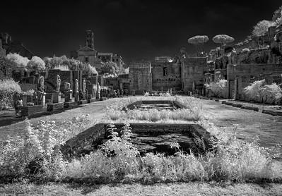 Vestal Virgin Palace infrared