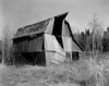 The Findlay Barn, built in 1928 by Bill Findlay (replacing the original barn). This barn finally collapsed during the summer of 2010.<br /> <br /> Graflex Speed Graphic 4x5 camera (1940-1946) loaded with Ilford FP4+ and the negative tray developed in Kodak D76 for 9.5 minutes at 19C.