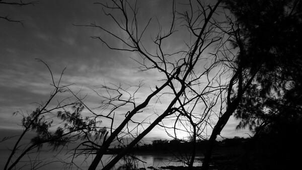 Nightcliff, Darwin