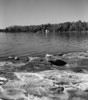 Ghost Lake, Dryden Ontario.<br /> <br /> The developing of this strip of film was messed up from the very beginning. I forgot I had a roll of 120 in the developing tank and ended up using too little developer so the image was cropped to remove the area that was not properly developed (left 20% of the images).<br /> <br /> This is also two images combined into one. One image was the far shore in focus, and the second image had the foreground in focus.<br /> <br /> Ilford Pan F+ developed in HC-110 dilution 'B' (times messed up due to not having proper amount of developer in the tank, with extra developer poured into tank after the first minute). <br /> <br /> Photo(s) taken with a Hasselblad 500 C/M.