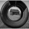 The Tire Swing