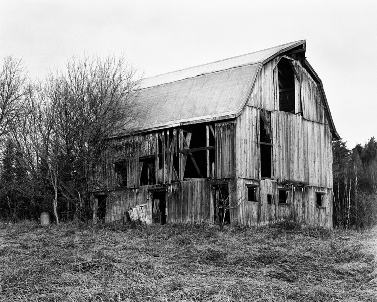 Local barn found on HW 601.<br /> <br /> This is the first photo I've taken with my new-to-me Calumet CC-401 with a Schneider  210mm lens that I had borrowed. Unfortunately the bellows had a couple light leaks that I didn't notice until I had taken several photos -  I had to crop some of the image off of the right edge. A camera like this sure does force you to slow down, which is a good thing.<br /> <br /> Arista EDU 100, developed in Kodak D76 for 8 minutes at 18C. Processed in PS CS3. I also used Nik Software's Silver Efex Pro filter.
