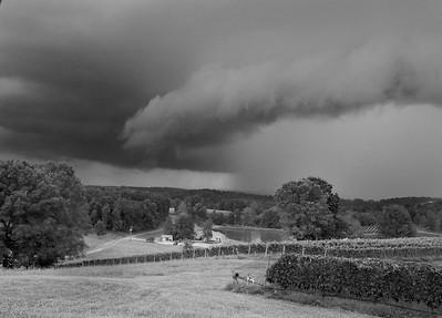 Approaching Rain, Three Sisters Vineyard