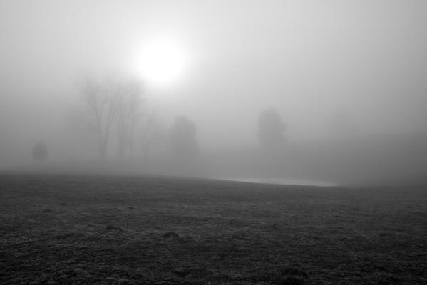 Foggy Illumination
