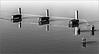 <center><i>Untitled (Palo Alto Water Trio), </i></center>#2009-7DII