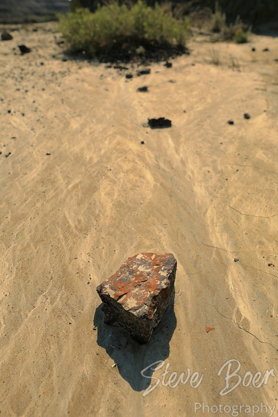 Rock isolated on textured sand with a bush