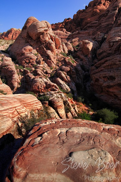 Red Rock Canyon Hillside