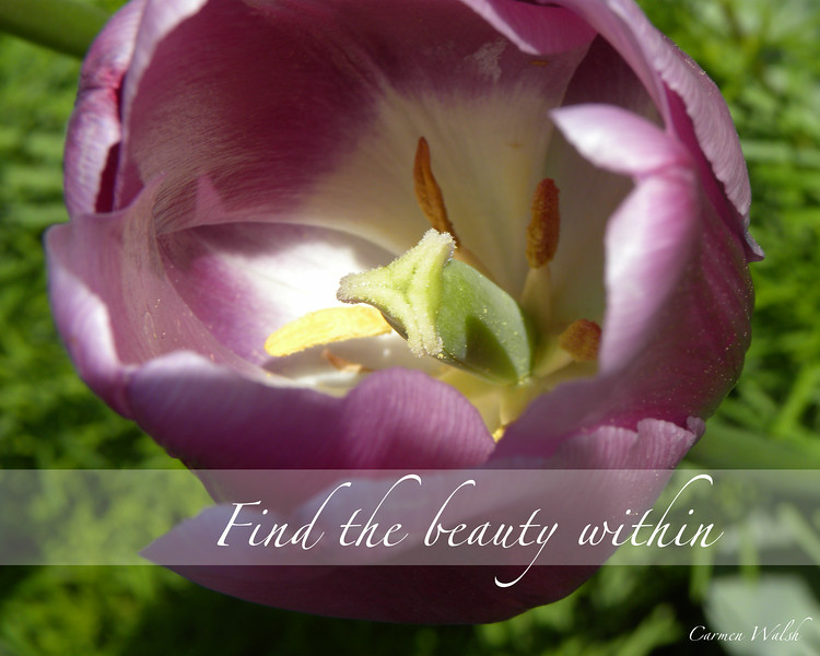 Find the Beauty Within (2012)