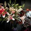 Street Lilies