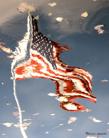 American Flag #4