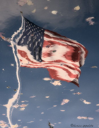 American Flag Reflected