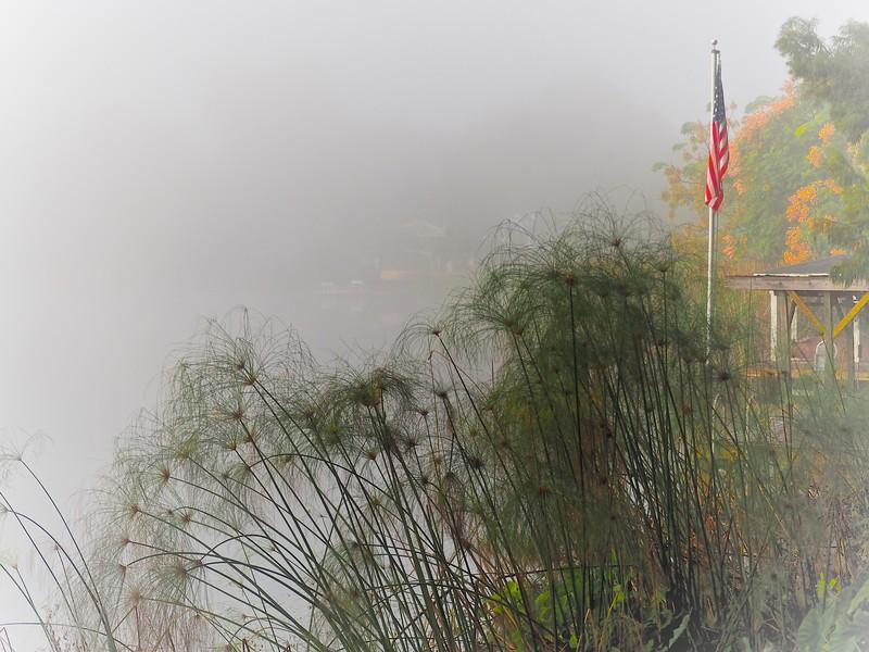 WPP2306  Foggy Morning on the Lake
