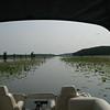 Caddo Lake boat trail