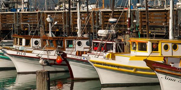 San Francisco Fleet