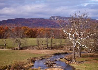 End of Plains Road Autumn