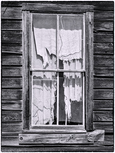"""Torn Curtains"""