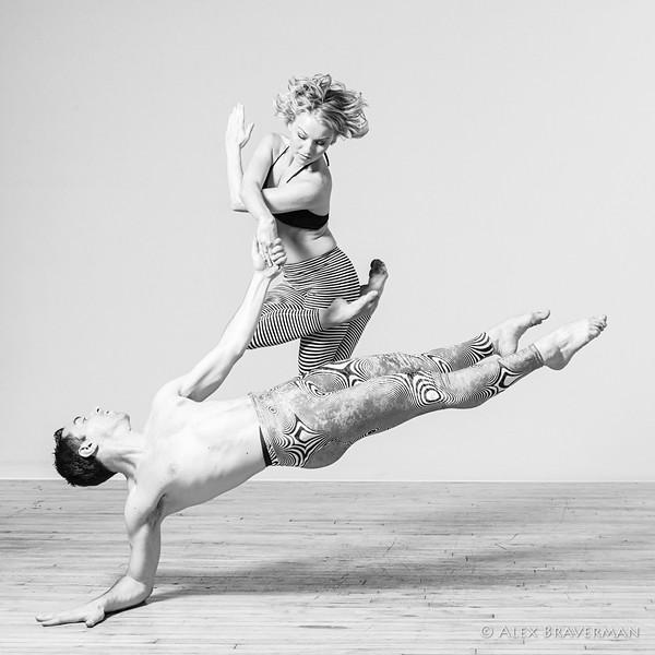 Zebra mating dance<br /> Credits: Patricia Foster, Gregory Sinacori