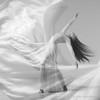 Dreaming<br /> Credits: Joy Voelker