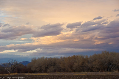 The Bosque del Apache at sunset.