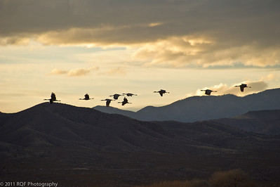 Cranes over the hills on approach.