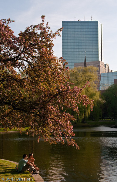 The Lagoon in Spring - Boston, MA, USA