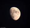 Boston Moon - Boston, MA, USA