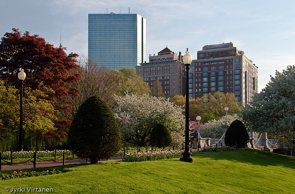 Public Garden - Boston, MA, USA