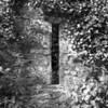 Cottage ruins, Kilarney, Ireland.