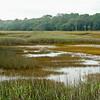 Botany Bay Edisto Island 2014-107