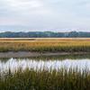 Botany Bay Edisto Island 2014-110