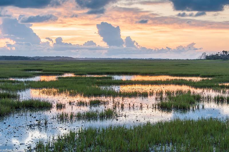 Botany Bay Edisto Island 2015-105