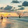 Botany Bay Edisto Island 2015-108