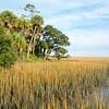 Botany Bay Edisto Island 2014-109