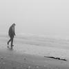 Botany Bay Edisto Island 2014-104