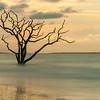Botany Bay Edisto Island 2015-112