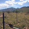 Box Canyoh in the Santa Rita Mountains