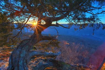 Sunrise at Hedges Pouroff