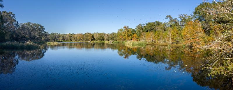 Creekfield Panorama