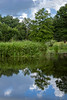 Late Summer on Creekfield Lake