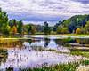 Creekfield Lake in November